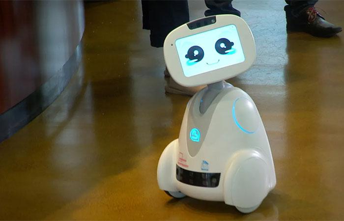 roboticsbiz.com